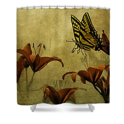 Spring Fever Shower Curtain by Diane Schuster
