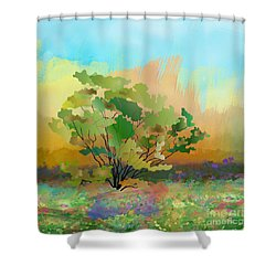 Spring Field Shower Curtain by Bedros Awak