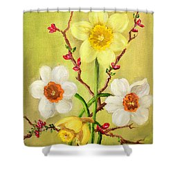 Spring Flowers 2 Shower Curtain by Randy Burns