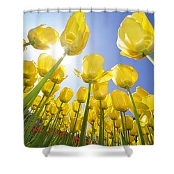 Spring Flowers 5 Shower Curtain