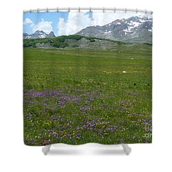 Spring Flowers - Durmitor National Park - Montenegro Shower Curtain by Phil Banks