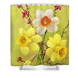 Spring Flowers Shower Curtain by Randol Burns
