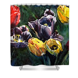 Spring Follows Winter Shower Curtain