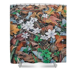 Shower Curtain featuring the painting Spring Forward by Pamela Clements