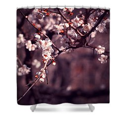 Spring Has Come Shower Curtain