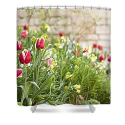 Spring Has Sprung Shower Curtain by Anne Gilbert