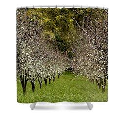 Spring Has Sprung Shower Curtain by Bill Gallagher