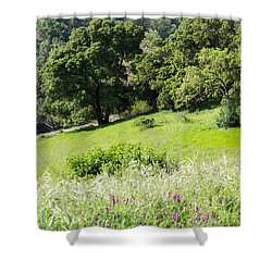 Shower Curtain featuring the photograph Spring Hike by Suzanne Luft