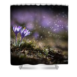 Spring Impression I Shower Curtain by Jaroslaw Blaminsky