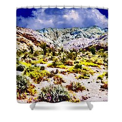 Spring In Anza Borrega  Shower Curtain by Bob and Nadine Johnston