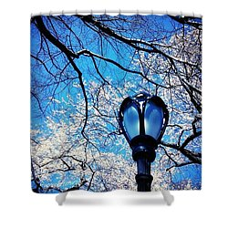 Spring In Central Park New York Shower Curtain