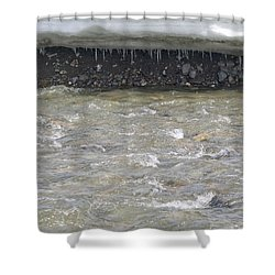 Spring In Denali Park Shower Curtain by Tara Lynn