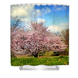 Spring In Kentucky Shower Curtain by Darren Fisher