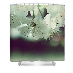 Shower Curtain featuring the photograph Spring In My Heart by Marija Djedovic