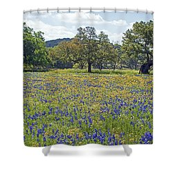 Spring In The Texas Hill Country Shower Curtain