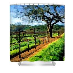 Spring In The Vineyard Shower Curtain by Elaine Plesser