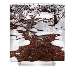 Shower Curtain featuring the photograph Spring Into Winter by Kerri Mortenson