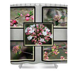 Spring Is Here - Gray Shower Curtain