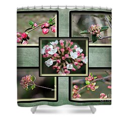 Spring Is Here - Green Shower Curtain