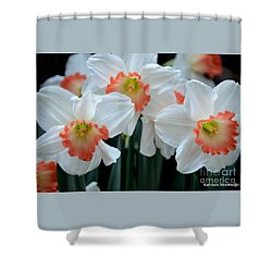 Spring Jonquils Shower Curtain by Kathleen Struckle