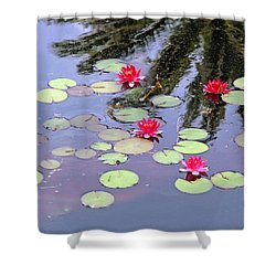 Spring Lilly Shower Curtain
