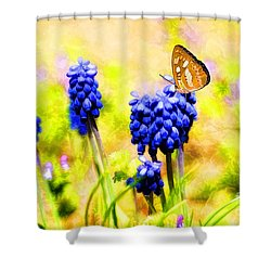 Spring Magic Shower Curtain by Darren Fisher