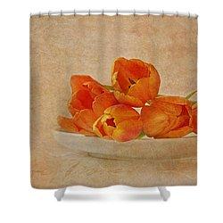 Spring Menu Shower Curtain by Claudia Moeckel