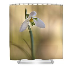 Shower Curtain featuring the photograph Spring Messenger by Annie Snel