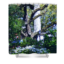 Spring Monolith Shower Curtain