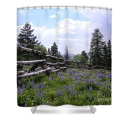 Spring Mountain Lupines 2 Shower Curtain by Crystal Miller