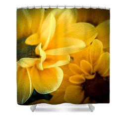Spring Mums Shower Curtain