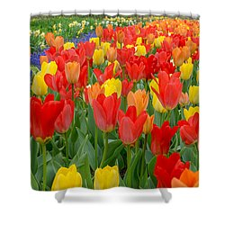 Spring Of Glory Shower Curtain