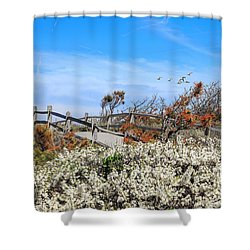 Spring On Cape Cod Shower Curtain