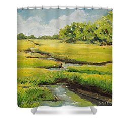 Spring On The Marsh Shower Curtain