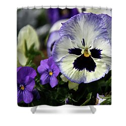 Spring Pansy Flower Shower Curtain by Ed  Riche