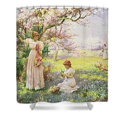 Spring   Picking Flowers Shower Curtain by Alfred Augustus I Glendenning