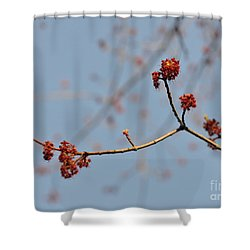 Spring Promise Shower Curtain