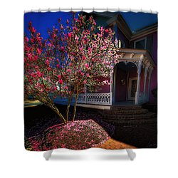 Spring R Sprung 3 Shower Curtain