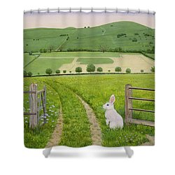Spring Rabbit Shower Curtain by Ditz