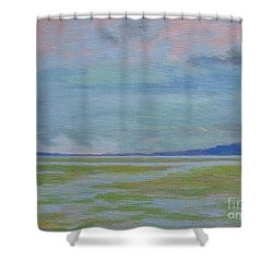 Spring Rain At Lake Jackson Shower Curtain