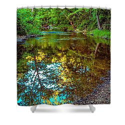 Spring Reflection  Shower Curtain by Peggy Franz