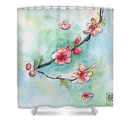Spring Relief Shower Curtain