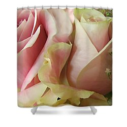 Spring Romance Pink Roses Shower Curtain by Danielle  Parent