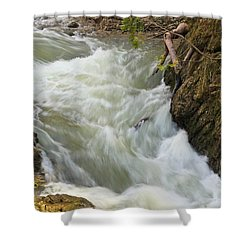 Spring Rush Shower Curtain by Julie Andel