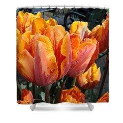 Shower Curtain featuring the photograph Spring Shower by Cheryl Hoyle
