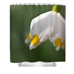 Spring Snowflake Shower Curtain by Andreas Levi