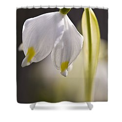 Spring Snowflake Shower Curtain by Heiko Koehrer-Wagner
