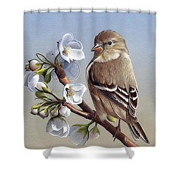 Shower Curtain featuring the painting Spring Splendor by Mike Brown