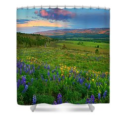 Spring Storm Passing Shower Curtain
