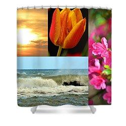 Spring Summer Collage Shower Curtain by Sandi OReilly